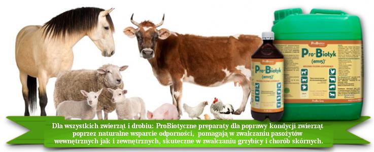 Pro-Biotyk (Em-15)