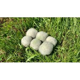 Bokashi balls