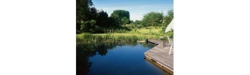 Ponds and waterholes